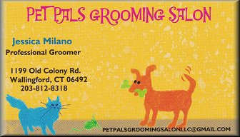 Pet Pals Grooming Salon, Wallingford